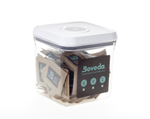 Boveda-8g-container