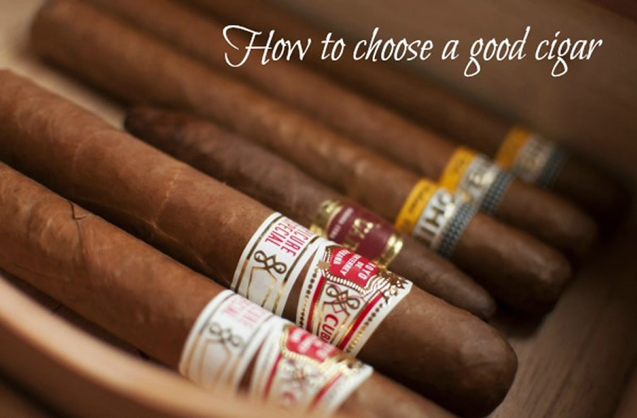 Mr-Mrs-Romance-shopping-for-cigars-1-title